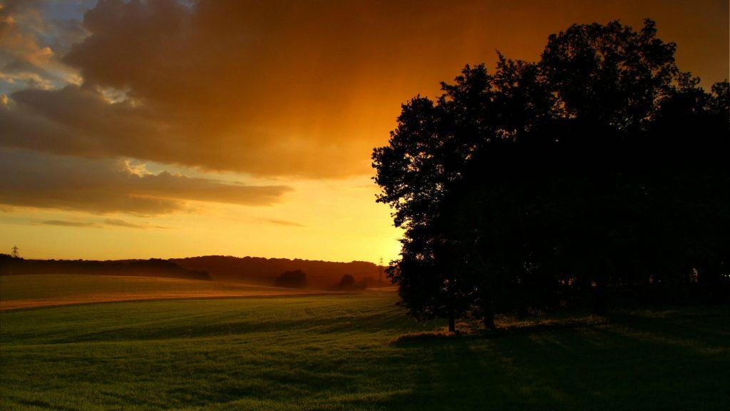 Spacer na zielonym Górnym Śląsku