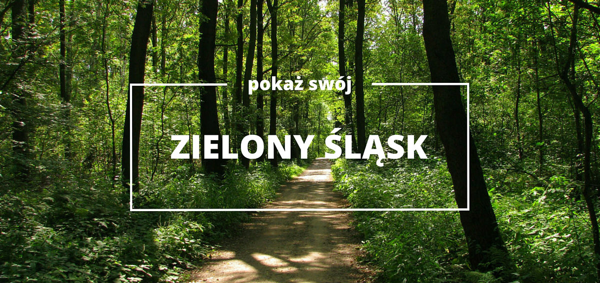 zielony_slask_